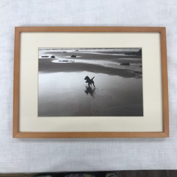 Amy on the Beach - framed photograph