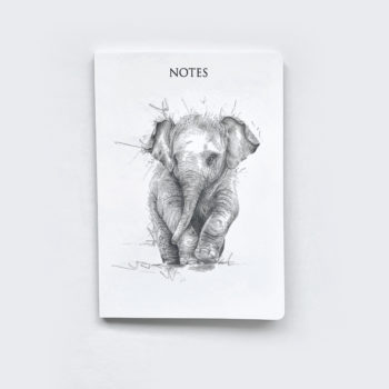 Elephant Notebook by Beverley Fisher