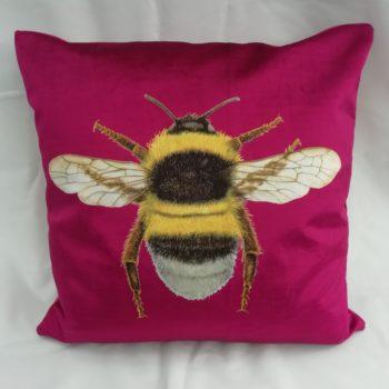 Cushion by Linda Rendle