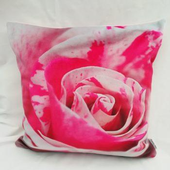 Pink Rose Photo Cushion by Linda Rendle